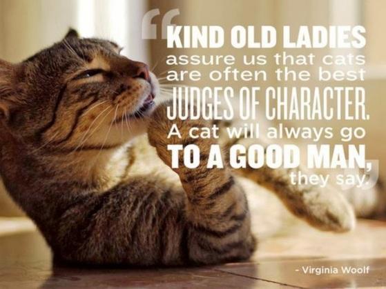 Animal quotes 0005